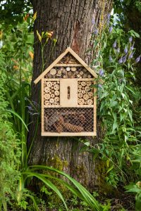 FAQ zum Insektenhotel